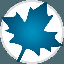 Maple 2015.1 强大的数学计算软件