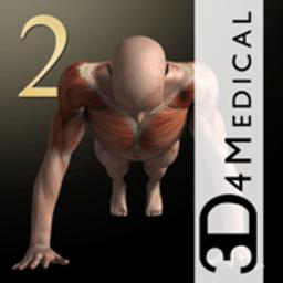 iMuscle 2 3.9.1 3D肌肉训练健身软件