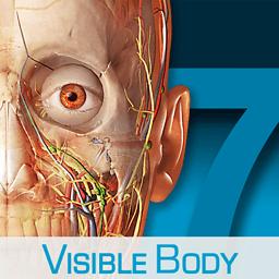 Human Anatomy Atlas 7.4.01 专业人体解剖学图谱