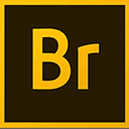 Adobe Bridge CC 2019 9.1.0.338 强大的图片和设计管理工具