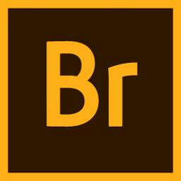 Adobe Bridge CC 2020 10.0.4 强大的图片和设计管理工具
