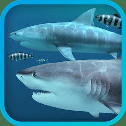 Sharks 3D 2.0.5 鲨鱼动态壁纸