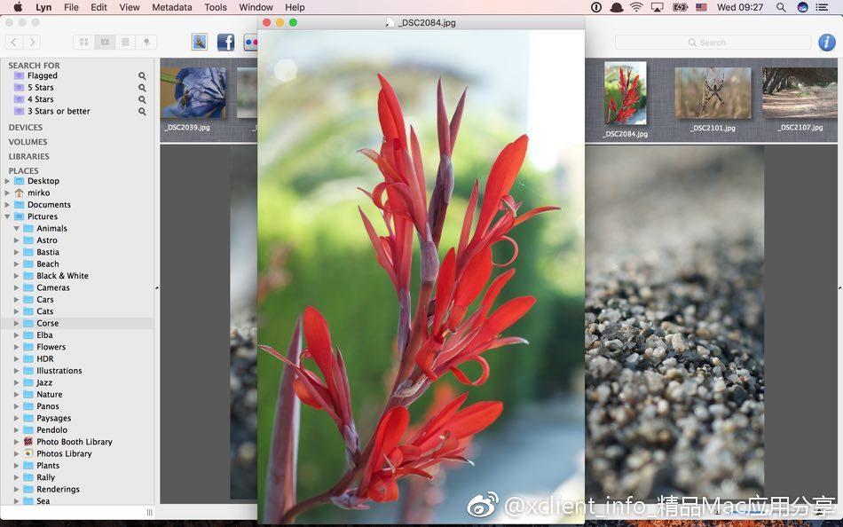 Lyn 1.13 轻量级看图软件