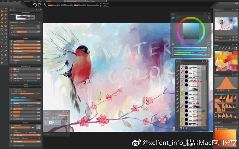 Paintstorm Studio 2.43.120120 数字油画创建工具