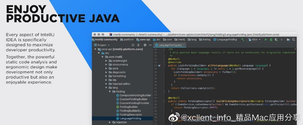 IntelliJ IDEA 2020.2.3 业界公认的最好的java开发工具之一