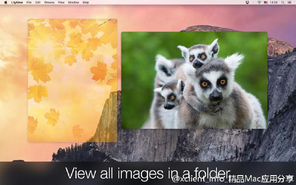 LilyView 1.2.2 手势看图